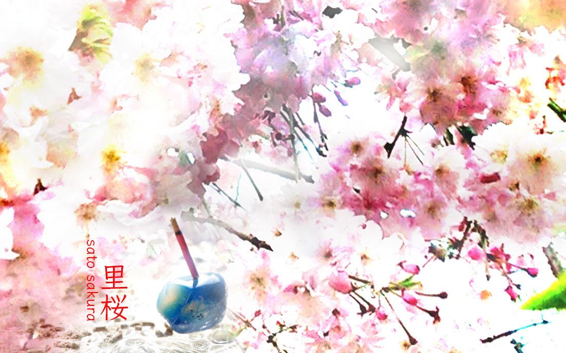 里桜-真山