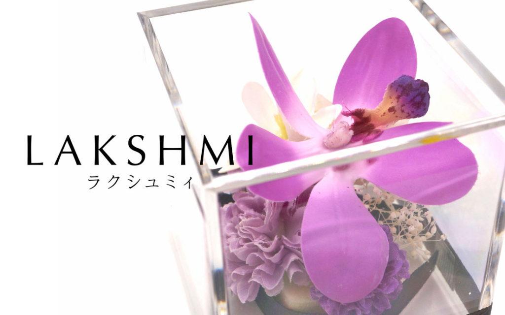 仏花LAKSHMI-ラクシュミィ-デンファレ